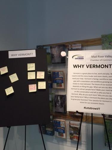 Mad River Valley Attendees share their reasons of Why Vermont